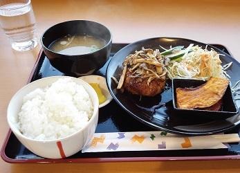 T_hukui1909.jpg