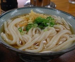 udon_hiyasi1908.jpg